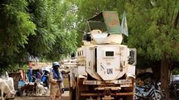 Vietnam exhorta a solucionar desafíos de la seguridad y desarrollo social en Malí