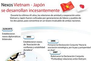 Nexos Vietnam - Japón  se desarrollan incesantemente