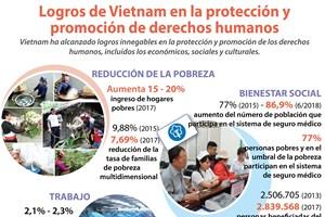 [Infografia] Vietnam alcanza logros en la protección de los derechos humanos