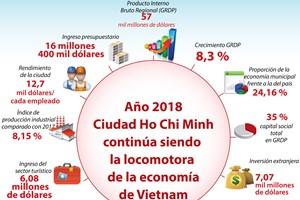 [Infografía] Ciudad Ho Chi Minh continúa siendo locomotora de economía de Vietnam