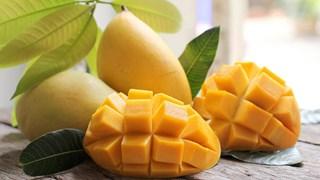 Vietnam es el decimotercer productor de mango del mundo