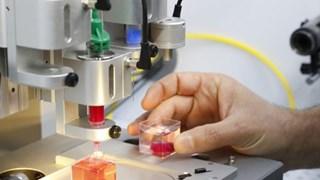 (Televisión) Sector privado con grandes aportes al desarrollo científico-tecnológico de Vietnam