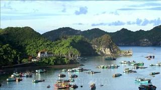 (Televisión) Vietnam promueve turismo doméstico en medio de COVID-19