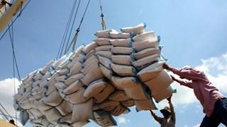 Superávit comercial de Vietnam alcanza nivel récord