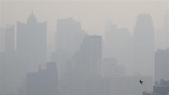 Tailandia se enfrasca en lucha contra polución de aire