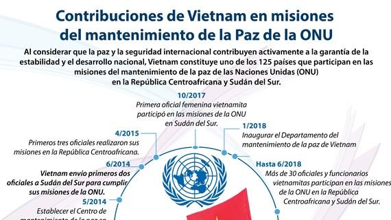 [Infografía] Contribuciones de Vietnam en misiones  del mantenimiento de la Paz de la ONU