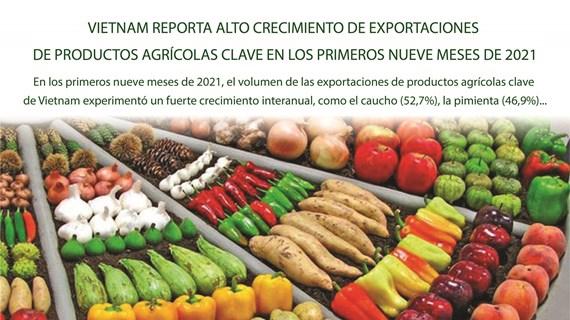 Crecen exportaciones de productos agrícolas clave de Vietnam en los primeros nueve meses
