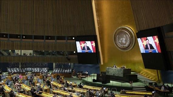 Vietnam y Consejo de Seguridad: de participante a socio para paz sostenible