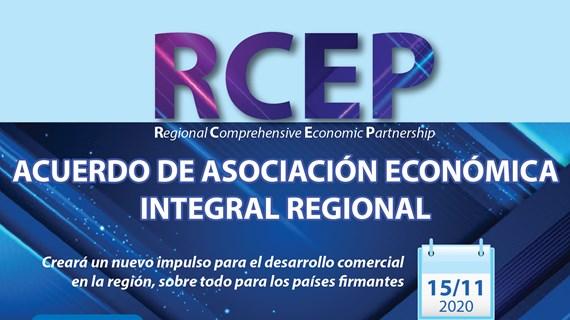 Acuerdo RCEP creará nuevo impulso para el desarrollo comercial regional