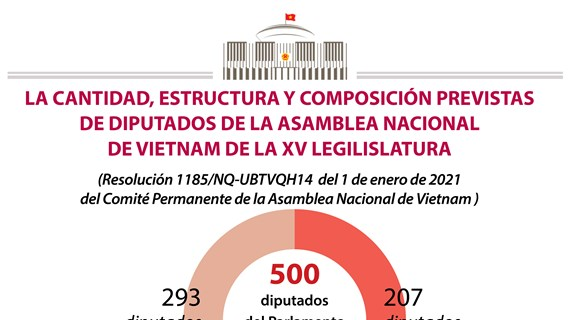Parlamento vietnamita garantiza estructura adecuada de diputados