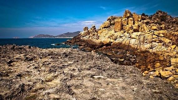 Reserva de biosfera de Nui Chua en Vietnam, lugar seguro para las tortugas marinas