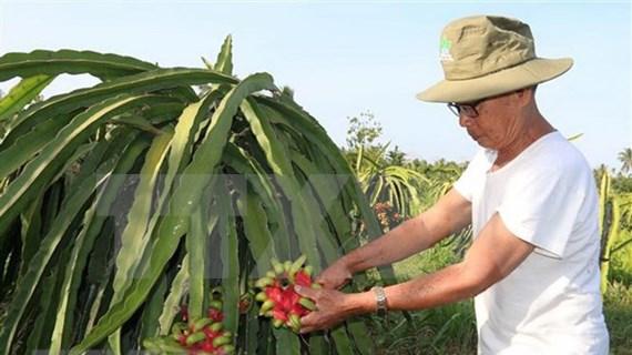 EVFTA trae oportunidades y desafíos a producción agrícola vietnamita