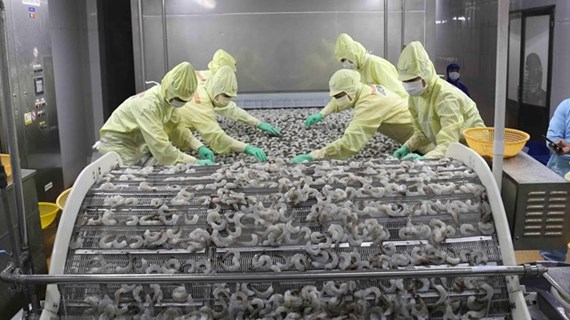 Alcanza Vietnam superávit comercial en los primeros cinco meses del año