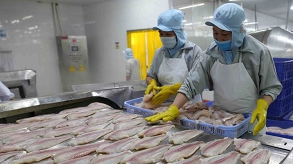 Estrenan portal de consultas sobre el acuerdo EVFTA para empresas vietnamitas