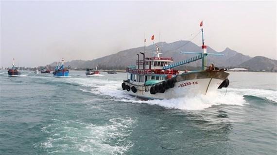 Provincia vietnamita se empeña en combatir la explotación pesquera ilegal