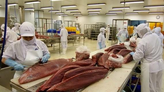 Vietnam dispone de oportunidades para exportar atún a África y el Medio Oriente