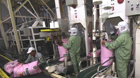 Logra Vietnam superávit comercial récord en agricultura, silvicultura y acuicultura