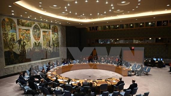 Intensifican cooperación entre miembros no permanentes del Consejo de Seguridad de la ONU
