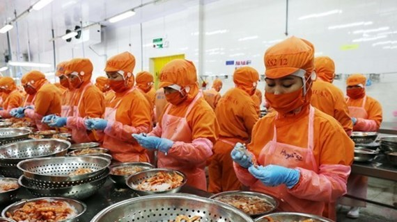 TLC promueve intercambio comercial Vietnam-Reino Unido
