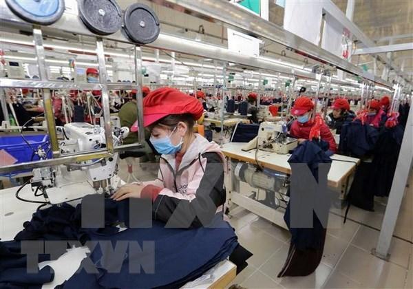 Vietnam cambia formas de promocion comercial para adaptarse a COVID-19 hinh anh 1