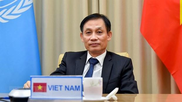 Fuerzas de mantenimiento de la paz contribuyen a mejorar la posicion de Vietnam hinh anh 3