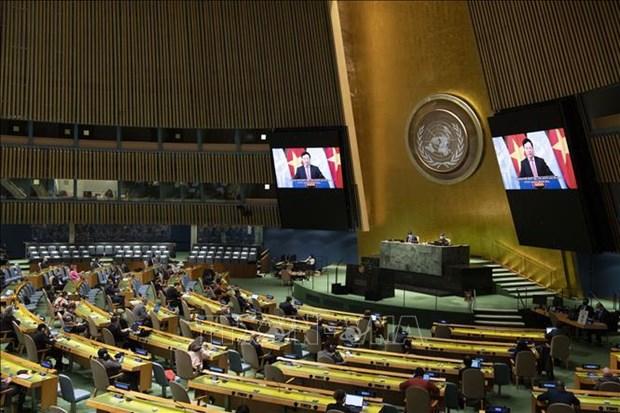 Vietnam y Consejo de Seguridad: de participante a socio para la paz sostenible hinh anh 2