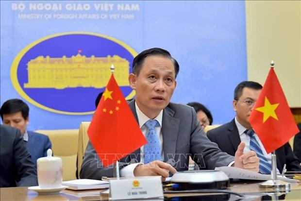 Vietnam y Consejo de Seguridad: de participante a socio para la paz sostenible hinh anh 6