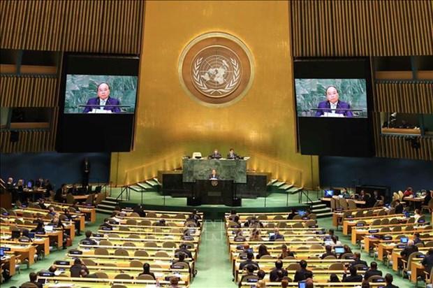 Vietnam y Consejo de Seguridad: de participante a socio para la paz sostenible hinh anh 4