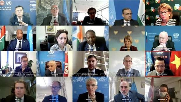 Vietnam y Consejo de Seguridad: de participante a socio para la paz sostenible hinh anh 3
