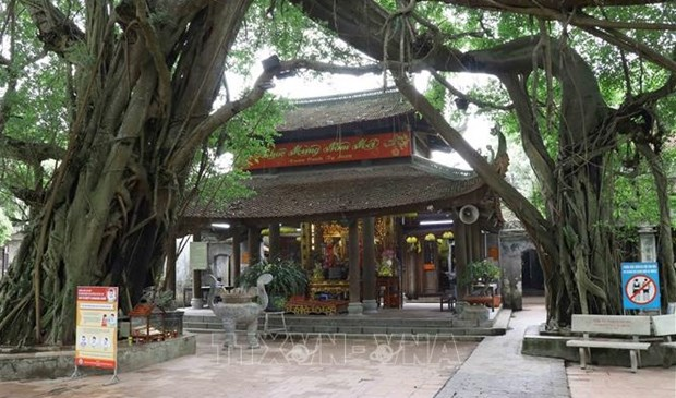 Exhortan a suspender actividades religiosas en Vietnam para prevenir el COVID-19 hinh anh 1