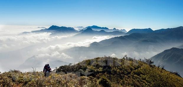 Turismo de Vietnam busca recuperarse en medio del COVID-19 hinh anh 2