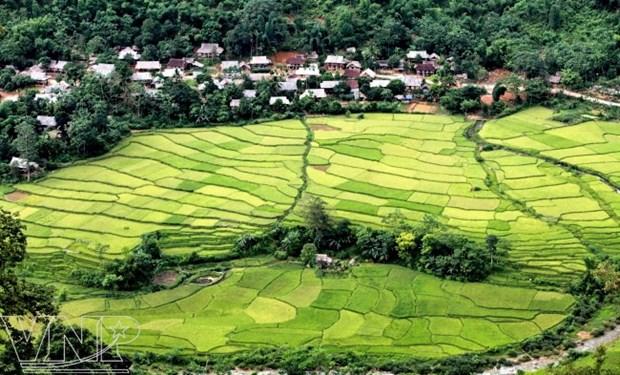 Descubren la Reserva Natural de Pu Luong en provincia vietnamita de Thanh Hoa hinh anh 1