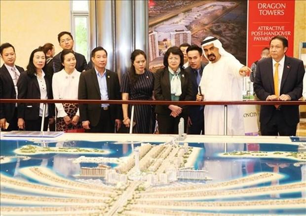 Promueven Vietnam y Emiratos Arabes Unidos cooperacion economica hinh anh 1