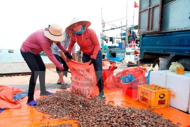 El desarrollo del sector acuicola impulsa la economia maritima de Vietnam hinh anh 3