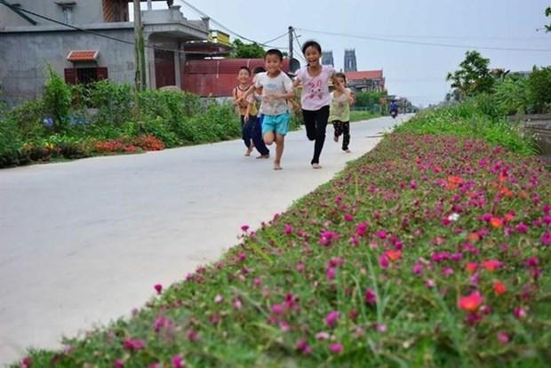 Pronostican dificultades en la modernizacion rural en Vietnam hinh anh 1