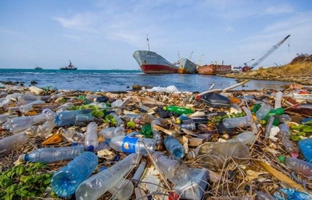 Residuo plastico: Necesita una aplicacion de mayor impuesto para productos de nailon hinh anh 3