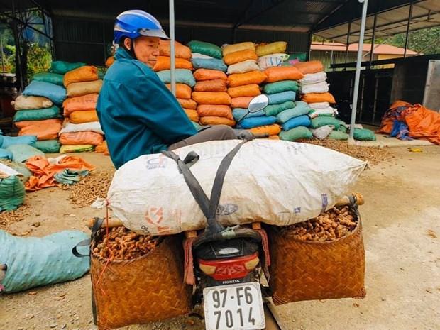 Empresarios vietnamitas suman esfuerzos para enfrentar al coronavirus hinh anh 2