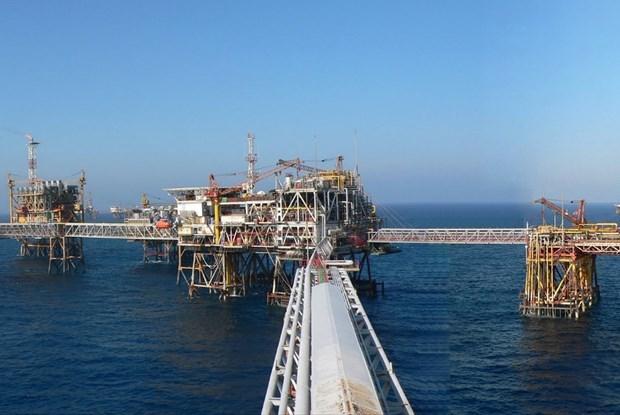 Industria del petroleo de Vietnam por superar las dificultades provocadas por COVID-19 hinh anh 1