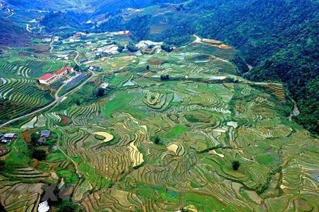 Provincia vietnamita de Lao Cai lanza medidas para recuperar el turismo hinh anh 2