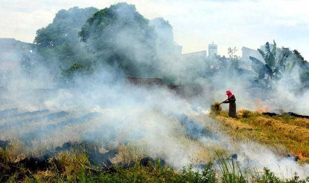 Vietnam reducira nueve por ciento de emisiones de gases de efecto invernadero para 2030 hinh anh 1