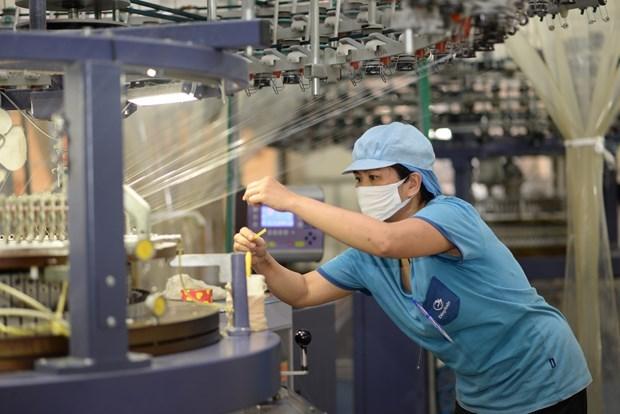 Vietnam alcanza superavit comercial multimillonario pese al COVID-19 hinh anh 2