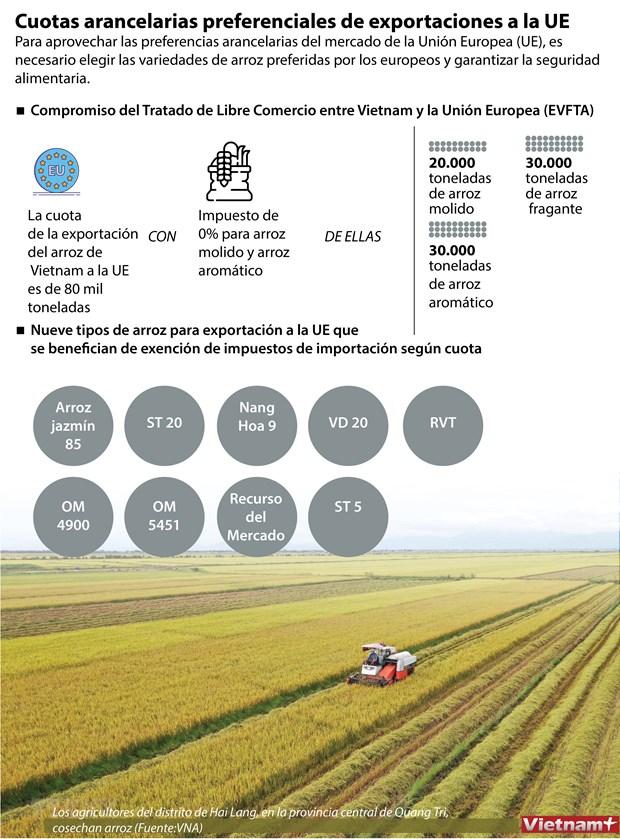 Cuotas arancelarias preferenciales de exportaciones a la UE hinh anh 1