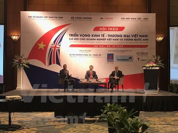 Negociacion de TLC entre Vietnam y Reino Unido apunta a completarse a fines de 2020 hinh anh 2