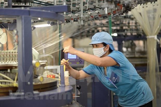 Exportaciones textiles de Vietnam podrian disminuir 15,3 por ciento hinh anh 1
