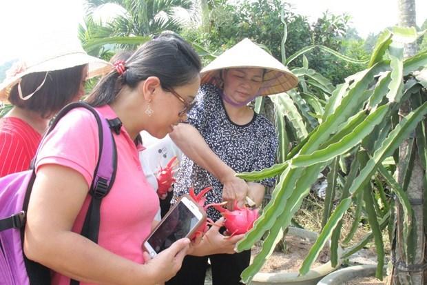 Provincia vietnamita impulsa ecoturismo junto con el desarrollo sostenible hinh anh 2