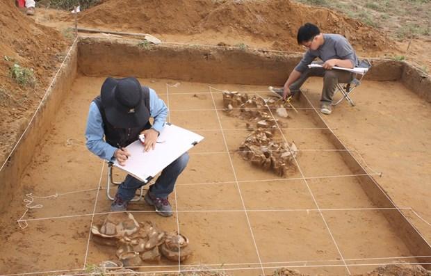 Viaje para descubrir Bai Co, lugar de convergencia de las culturas  hinh anh 1
