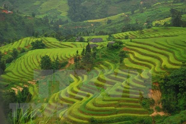 Destinos imperdibles al visitar provincia vietnamita de Ha Giang hinh anh 2