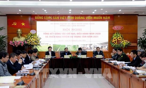 Exhortan en Vietnam fortalecer la proteccion forestal hinh anh 1