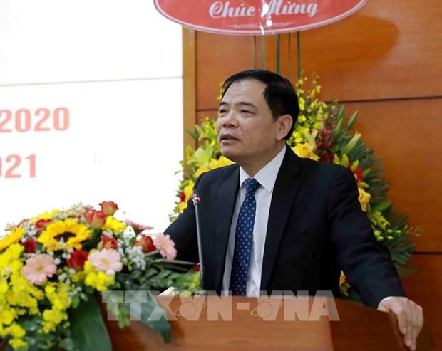 Exhortan en Vietnam fortalecer la proteccion forestal hinh anh 2