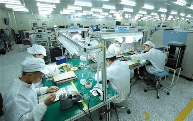 Empresas vietnamitas optimistas ante las adversidades hinh anh 3
